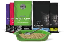 best cat litter boxes changing cat litter why switch to world s best cat litter