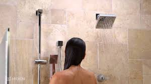 Moen 90 Degree Faucet Brushed Nickel by 90 Degree Eco Performance Handheld Shower Moen Features