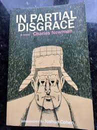 Newman In P Disgrace Cover