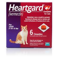 heartgard chewables for cats cat heartworm medication petcarerx