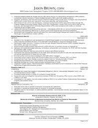 Best Resume Format Cfo