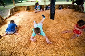 Conners Pumpkin Patch Jacksonville Fl by Amazing Grace Crop Maze