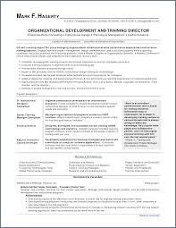 Resume Templates For First Job Example Elegant 52 New Cv Full Hd