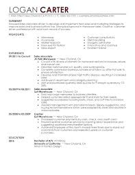 Executive Summary Sample Resume For Customer Service Statement