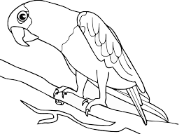 Free Coloring Pages For Birds Part