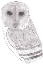 Barn Owl Drawing 1 By ThelVadam1 On DeviantArt Country Barn Art Projects For Kids Drawing Red Silo Stock Vector 22070497 Shutterstock Gallery Of Alpine Apartment Ofis Architects 56 House Ground Plan Drawings Imanada Besf Of Ideas Modern Best Custom Florida House Plans Mangrove Bay Design Enchanted Owl Drawing Spiral Notebooks By Stasiach Redbubble Top 91 Owl Clipart Free Spot Drawn Barn Coloring Page Pencil And In Color Drawn Pattern A If Youd Like To Join Me Cookie