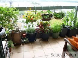 Balcony Gardening Source Saucyonionfileswordpress