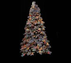 Flocked Pre Lit Pencil Christmas Tree by Hallmark 9 U0027 Snowdrift Spruce Tree With Quick Set Technology Page
