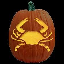 Tmnt Pumpkin Pattern Free by 13 Best Pumpkin Carving Images On Pinterest Pumpkin Carvings