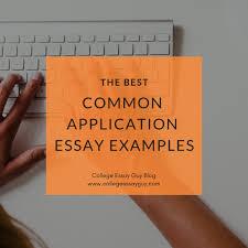 The Best Common App Essay Examples 2019