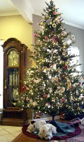 Prelit Christmas Tree That Lifts Itself by 520 Best Oh Christmas Tree Images On Pinterest Merry Christmas
