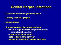 herpes virus ppt download