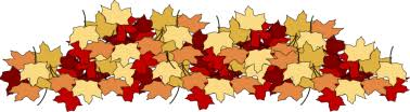 transparent fall leaves clipart