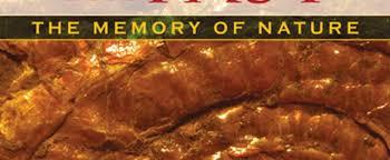 The Presence Of Past Morphic Resonance And Memory Nature Rupert Sheldrake Akaraee I Avasta Iseennast