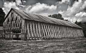 CT Tobacco Farm | Snapshots For Sore Eyes Catalogers Corner Barns Field Trip South Tobacco And Woodwork Wood Shop Barn Virginia Tobacco Barns 1940s Google Search Memories Shadowy This Barn Is Visible From Us Route Flickr Project 365332 A Teaser Emily Carter Mitchell Carolyns Travel Stories Recumbent Conspiracy Theorist Ride B O Trail Asheville Shopping Holly Mathis Interiors Historic Houses Pinterest Old Outdoor Places Spaces Greensboro Daily Photo Log Type Typical For North Carolina Group