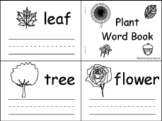 Life Cycle Of A Pumpkin Seed Worksheet by Plant Printouts Enchantedlearning Com