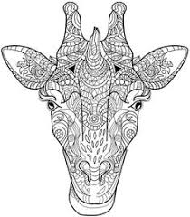 Giraffe Coloring Page Colorpagesforadults Adultcoloringpages Colorpages