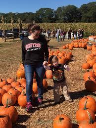 Gainesville Ga Pumpkin Patch by Uncle Shuck U0027s Corn Maze U0026 Pumpkin Patch In Dawsonville Georgia