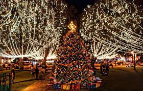 Types Of Christmas Tree Lights by Family Events In Cincinnati Coney Island Cincinnati