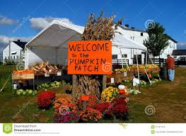 Pumpkin Patch Snohomish Wa by Old Truck At Pumpkin Patch Farm Stock Images Image 34411114