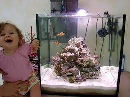 aquarium nano eau de mer le nano cube colors 90l net de djé