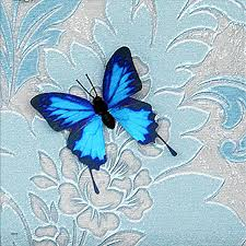 3d Butterfly Framed Wall Art Lovely Butterflies On Satined Paper