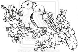Drawn Lovebird Outline 4