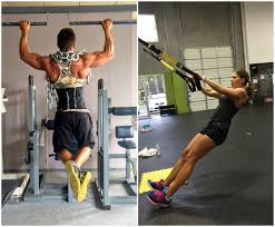 Pullups VS Rows The Pullup Solution