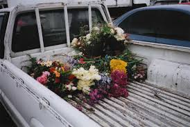 An Old Truck Bed Full Of Flowers Where Is She Going With Them What