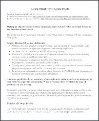 Profile Example For Resume Summary Inspirational Best