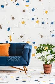 pflanze neben blauen sofa mit orange kissen in bunte wohnzimmer interieur mit tapete echtes foto stockfoto und mehr bilder blau