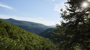 The Best Small Towns To Visit In The Hudson Valley And Catskills ... Craigslist Cars And Trucks By Owner Best Car 2018 Craigslist Inland Empire Motorcycles Carnmotorscom Dallas Cars And Trucks By Owner Tokeklabouyorg Buying A Used In Inland Empire 2013 Chevy Avalanche For Sale Top Release 2019 20 Parts 12995 Thats How This Bentley Rolls Orange County Dealercraigslist Imgenes De Chicago Illinois Amp T