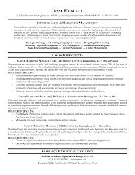 Agreeable Sample Resume For Sales Manager In Banking Your Awesome Collection