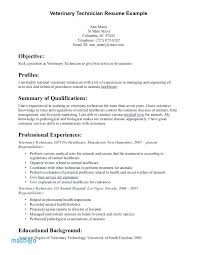 Veterinary Assistant Resume Examples Veterinarian
