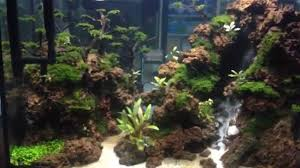 Air Terjun Di Aquascape (Waterfall Aquascape) - YouTube Aquascape Waterfall Tjupinang Part 2 Youtube Modern Aquarium Design With Style For New Interior Aquascape Low Cost My Waterfall Nhaquascape Pro Pondwater Feature Pumpschester Rockingham Diy Pondless Waterfallsbackyard Landscape Ideasmonmouth Nj Aqualand Nighttime Winter By Inc Photo Projectswarwickorange Countynynorthern Its Called Strenght Of A Thousand Stone Backyard Waterfalllow Maintenance Water Just Add And Patio Amazoncom Kit 3 W Free Led 3light