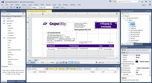 FileActiveReports 10 Designer In Visual Studio