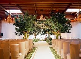 Champagne Chair Covers And Indoor Trees