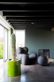 kaktus und designersessel im wohnzimmer bild kaufen