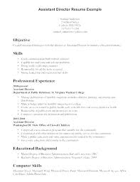Resume Examples For Computer Skills Knowledge And Sample Science