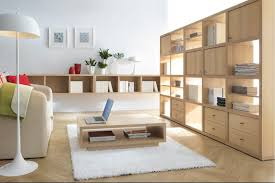 Modern Interior Design Wooden Furniture Icon Of How To Make My Living Room Tidy And Orderly