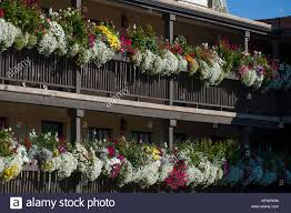 Governors Inn Stock Photos & Governors Inn Stock Images - Alamy Dress Up A Lantern Candlestick Wreath Banister Wedding Pew 24 Best Railing Decour Images On Pinterest Wedding This Plant Called The Mandivilla Vine Is Beautiful It Fast 27 Stair Decorations Stairs Banisters Flower Box Attractive Exterior Adjustable Best 25 Staircase Decoration Ideas Pin By Lea Sewell For The Home Rainy And Uncategorized Mondu Floral Design Highend Dtown Toronto Banister Balcony Garden Viva Selfwatering Planter 28 Another Easyfirepitscom Diy Gas Fire Pit Cversion That