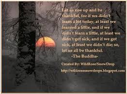 The Peace Of Gratitude