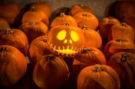 Pumpkin Festival Ohio by Ohio Fall Festivals Fall Fun In The Buckeye State