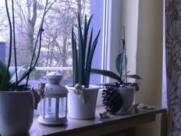 nfl wohnzimmer fensterbanke dekorieren