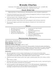 Resume Examples For Managers Business Development Management Sales Manager Position