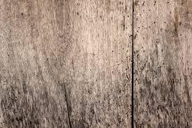 Vintage Wood Backgrounds Tumblr Hi Res Tex 635411 WoodVintage