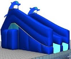 Rogue2 Inground Swimming Pool Slide By SR Smith