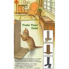 24 best Ideas to Keep Cats from Scratching Furniture images on