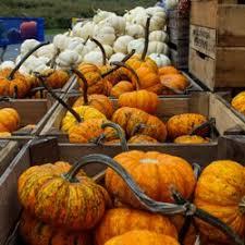 Apple And Pumpkin Picking Maryland by Baugher U0027s Orchard U0026 Farm 90 Photos U0026 43 Reviews Bakeries