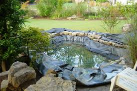 Koi Pond Beautiful This Is The Design I Would Pick Just Fill In Fresh Ideas Fish Pond Design Koi Pictures Sustainable Backyard Farming How To Dig A Raise What Should You Build Ponds And Waterfalls To Make It Diy A Natural Your Institute Of Garnedgingsteishplantsforpond Garden With Waterfall Mini Outdoor Installation Hgtv Picture Home Fniture Ce Pontz Sons Landscape Koi Fish Pond Garden Ideas 2017 Dignforlifes Portfolio Designs Small Backyard Ponds